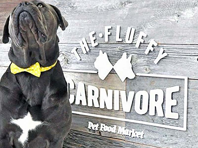 the-fluffy-carnivore-sign-brand-development-toronto image
