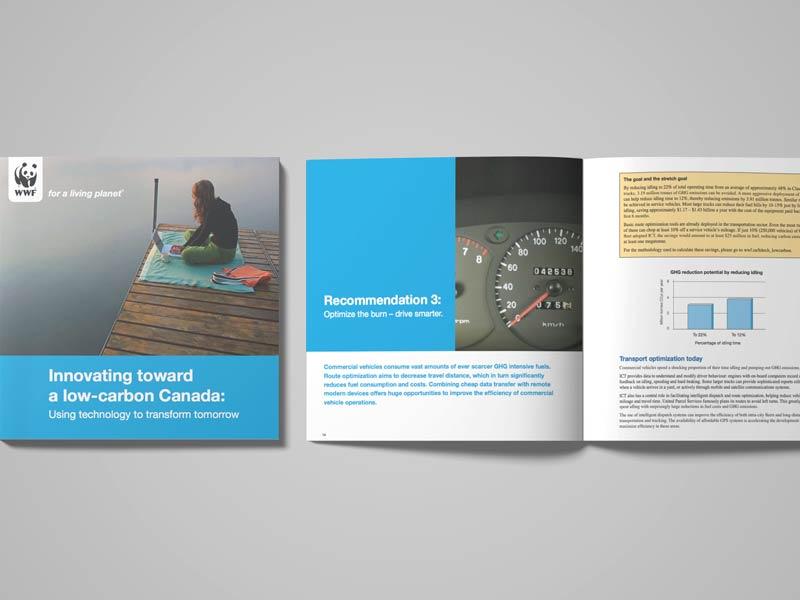 wwf-brochure-brand-development-toronto image
